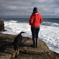 Rachel Raynor blog